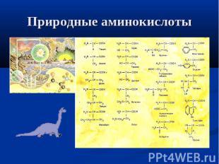 Природные аминокислоты
