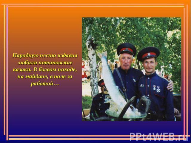 Народную песню издавна любили потаповские казаки. В боевом походе, на майдане, в поле за работой…