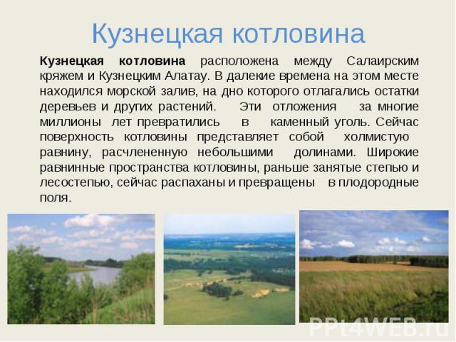 Кузнецкая котловина Кузнецкая котловина расположена между Салаирским кряжем и Кузнецким Алатау. В далекие времена на этом месте находился морской залив, на дно которого отлагались остатки деревьев и других растений. Эти отложения за многие миллионы …