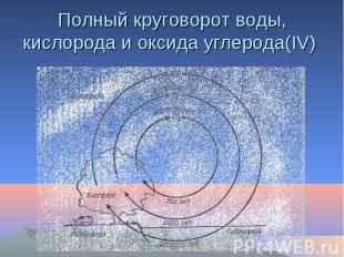 Полный круговорот воды, кислорода и оксида углерода(IV)