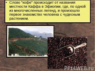 """Слово """"кофе"""" происходит от названия местности Каффа в Эфиопии, где, по одной из"""