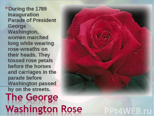 During the 1789 Inauguration Parade of President George Washington, women marched long while wearing rose-wreaths on their heads. They tossed rose petals before the horses and carriages in the parade before Washington passed by on the streets. The G…