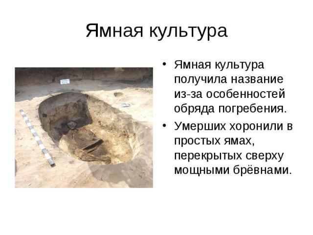 Ямная культура Ямная культура получила название из-за особенностей обряда погребения. Умерших хоронили в простых ямах, перекрытых сверху мощными брёвнами.