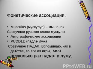 Фонетические ассоциации.Musculus (мускулус) – мышонокСозвучное русское слово мус
