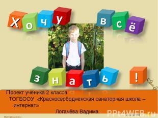 Проект ученика 2 класса ТОГБООУ «Красносвободненская санаторная школа – интернат