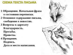 СХЕМА ТЕКСТА ПИСЬМА   1 Обращение. Начальная фраза о состоянии переписки.2 Осн