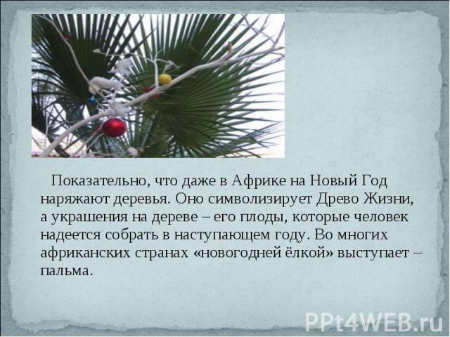 Показательно, что даже в Африке на Новый Год наряжают деревья. Оно символизирует Древо Жизни, а украшения на дереве – его плоды, которые человек надеется собрать в наступающем году. Во многих африканских странах «новогодней ёлкой» выступает – пальма.