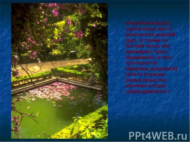 «Река бежит весело, шаля и играя; она то разольется в широкий пруд, то стремится быстрой нитью, или присмиреет, будто задумавшись, и чуть-чуть ползет по камешкам, выпуская из себя по сторонам резвые ручьи, под журчание которых сладко дремлется.»