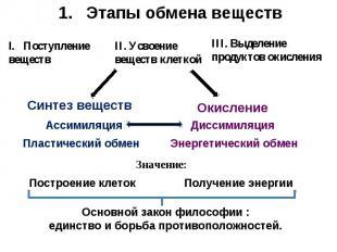 Этапы обмена веществ Основной закон философии : единство и борьба противоположно