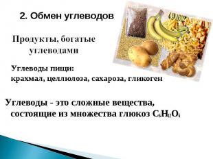 2. Обмен углеводов Продукты, богатые углеводами Углеводы пищи: крахмал, целлюлоз