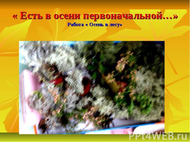 « Есть в осени первоначальной…»Работа « Осень в лесу»