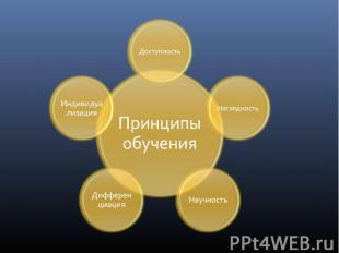 Принципы обучения