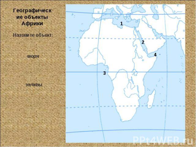 Географические объекты АфрикиНазовите объект:моря заливы
