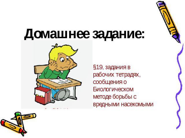 Домашнее задание:§19, задания врабочих тетрадях,сообщения оБиологическомметоде борьбы свредными насекомыми