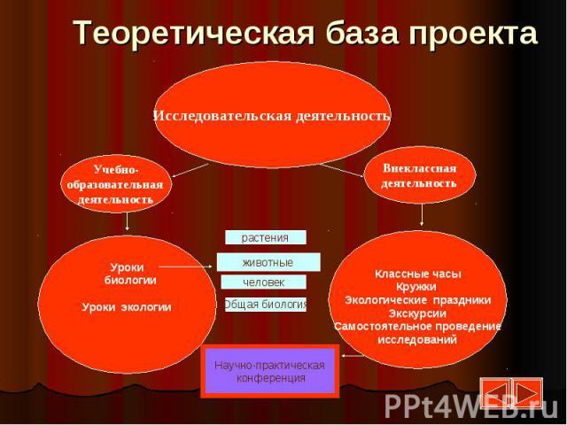 Теоретическая база проекта