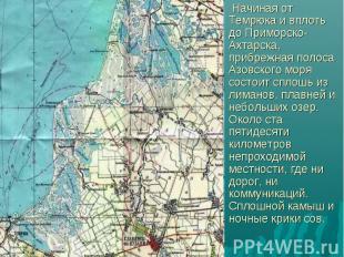 Начиная от Темрюка и вплоть до Приморско-Ахтарска, прибрежная полоса Азовского м