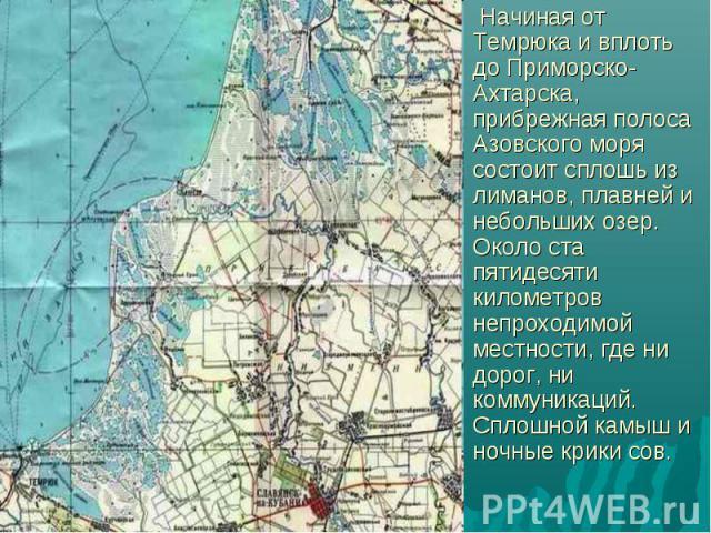 Начиная от Темрюка и вплоть до Приморско-Ахтарска, прибрежная полоса Азовского моря состоит сплошь из лиманов, плавней и небольших озер. Около ста пятидесяти километров непроходимой местности, где ни дорог, ни коммуникаций. Сплошной камыш и ночные к…
