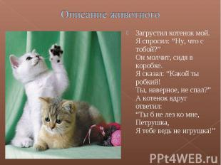 """Описание животногоЗагрустил котенок мой.Я спросил: """"Ну, что с тобой?""""Он молчит,"""