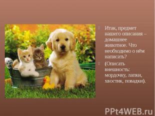 Итак, предмет нашего описания – домашнее животное. Что необходимо о нём написать