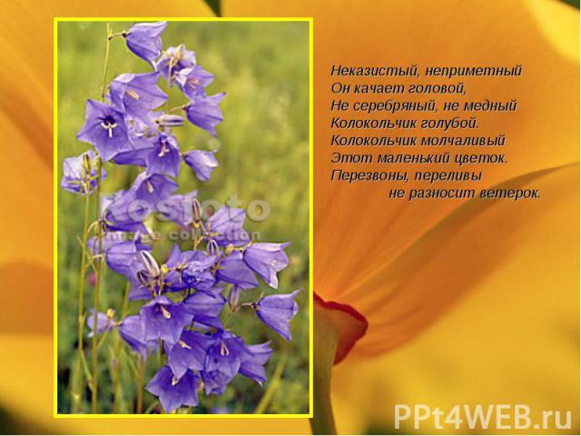 Неказистый, неприметныйОн качает головой,Не серебряный, не медныйКолокольчик голубой.Колокольчик молчаливыйЭтот маленький цветок.Перезвоны, переливы не разносит ветерок.
