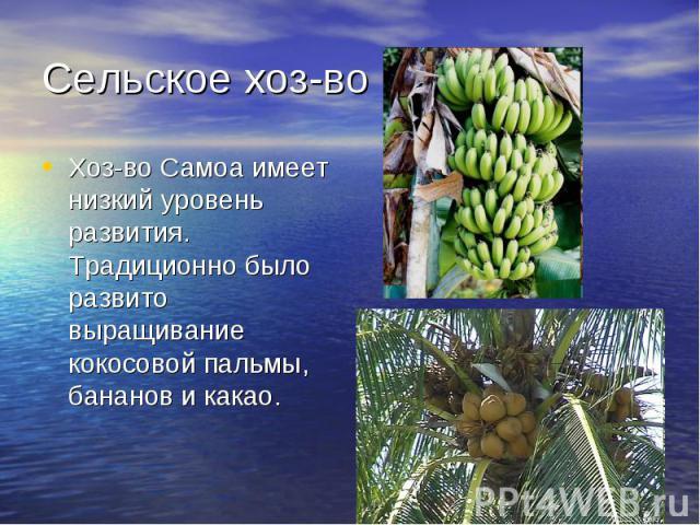Сельское хоз-воХоз-во Самоа имеет низкий уровень развития. Традиционно было развито выращивание кокосовой пальмы, бананов и какао.