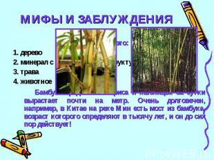 МИФЫ И ЗАБЛУЖДЕНИЯ22Бамбук это:1. дерево2. минерал с кольцевой моноструктурой3.