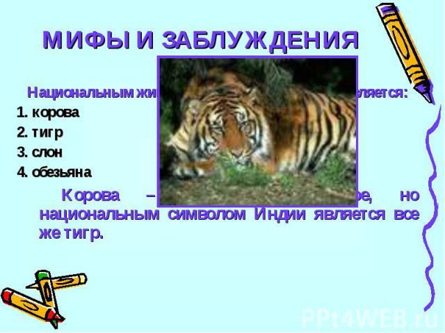МИФЫ И ЗАБЛУЖДЕНИЯ20Национальным животным – символом Индии является:1. корова2. тигр3. слон4. обезьянаКорова – священное животное, но национальным символом Индии является все же тигр.