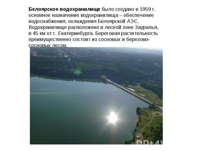 Белоярское водохранилище было создано в 1959 г. основное назначение водохранилища – обеспечение водоснабжения, охлаждения Белоярской АЭС. Водохранилище расположено в лесной зоне Зауралья, в 45 км от г. Екатеринбурга. Береговая растительность преимущ…