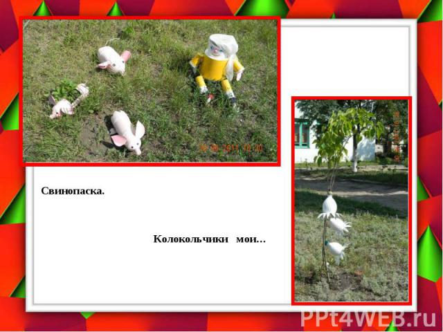 Свинопаска. Колокольчики мои…