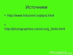 Источникиhttp://www.fotozveri.ru/ptpsi.html http://photographies.narod.ru/g_bird