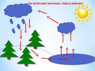 Как происходит круговорот воды в природе?