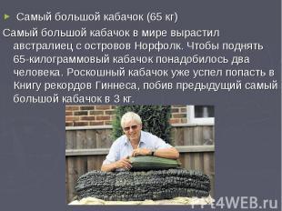 Самый большой кабачок (65 кг)Самый большой кабачок в мире вырастил австралиец с