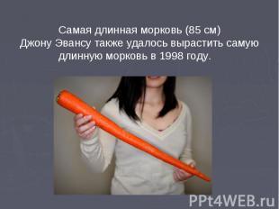 Самая длинная морковь (85 см) Джону Эвансу также удалось вырастить самую длинную