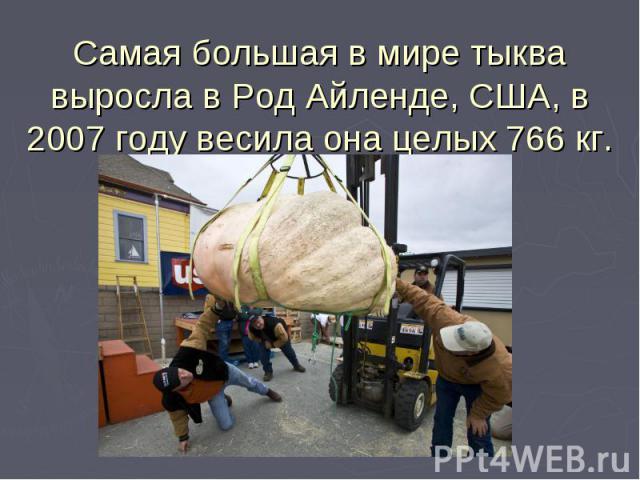Самая большая в мире тыква выросла в Род Айленде, США, в 2007 году весила она целых 766 кг.
