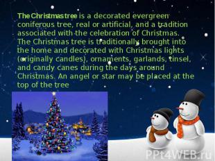 The Christmas tree is a decorated evergreen coniferous tree, real or artificial,