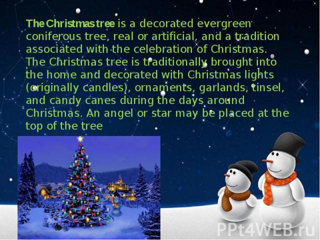 The Christmas tree is a decorated evergreen coniferous tree, real or artificial, and a tradition associated with the celebration of Christmas. The Christmas tree is traditionally brought into the home and decorated with Christmas lights (originally …
