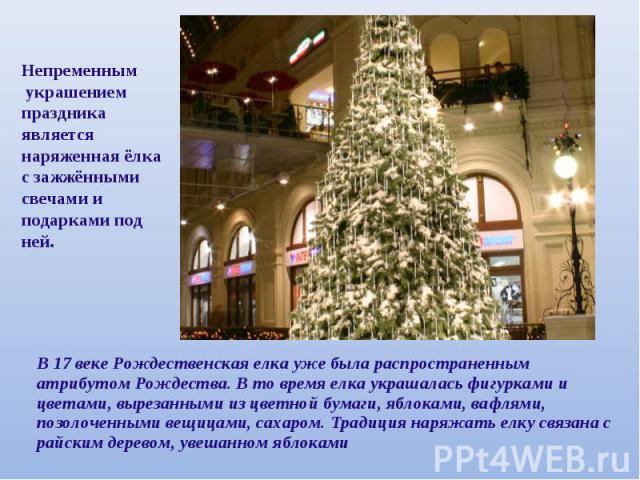 Непременным украшением праздника является наряженная ёлка с зажжёнными свечами и подарками под ней.В 17 веке Рождественская елка уже была распространенным атрибутом Рождества. В то время елка украшалась фигурками и цветами, вырезанными из цветной бу…