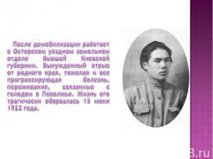 После демобилизации работает в Остерском уездном земельном отделе бывшей Киевско