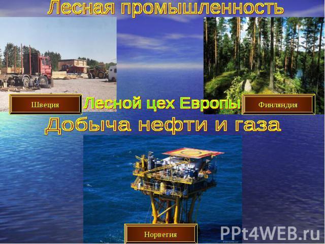 Лесная промышленностьЛесной цех ЕвропыДобыча нефти и газа