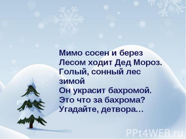 Мимо сосен и березЛесом ходит Дед Мороз.Голый, сонный лес зимойОн украсит бахромой.Это что за бахрома?Угадайте, детвора…