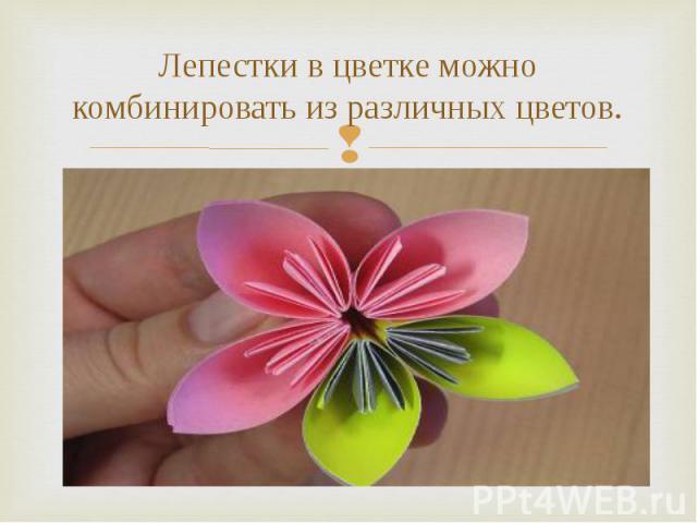 Лепестки в цветке можно комбинировать из различных цветов.