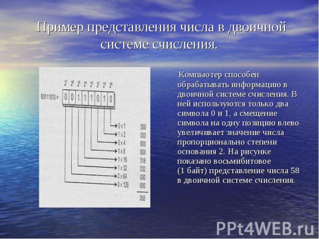 Пример представления числа в двоичной системе счисления. Компьютер способен обрабатывать информацию в двоичной системе счисления. В ней используются только два символа 0 и 1, а смещение символа на одну позицию влево увеличивает значение числа пропор…