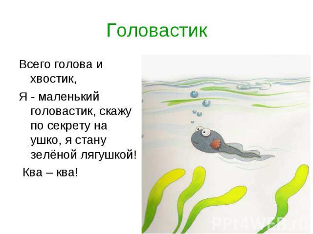 ГоловастикВсего голова и хвостик, Я - маленький головастик, скажу по секрету на ушко, я стану зелёной лягушкой! Ква – ква!