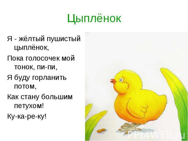 ЦыплёнокЯ - жёлтый пушистый цыплёнок, Пока голосочек мой тонок, пи-пи,Я буду горланить потом,Как стану большим петухом!Ку-ка-ре-ку!