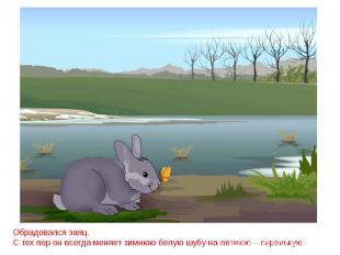 Обрадовался заяц.С тех пор он всегда меняет зимнюю белую шубу на летнюю – серень