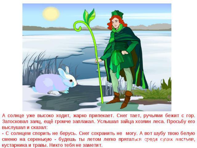 А солнце уже высоко ходит, жарко припекает. Снег тает, ручьями бежит с гор. Затосковал заяц, ещё громче заплакал. Услышал зайца хозяин леса. Просьбу его выслушал и сказал:- С солнцем спорить не берусь. Снег сохранить не могу. А вот шубу твою белую с…