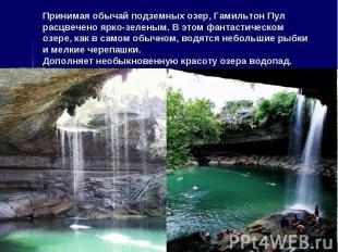 Принимая обычай подземных озер, Гамильтон Пул расцвечено ярко-зеленым. В этом фа