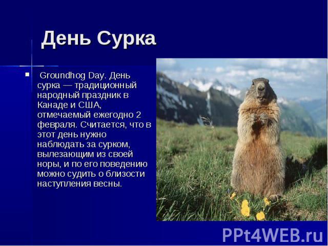 День Сурка Groundhog Day. День сурка — традиционный народный праздник в Канаде и США, отмечаемый ежегодно 2 февраля. Считается, что в этот день нужно наблюдать за сурком, вылезающим из своей норы, и по его поведению можно судить о близости наступлен…