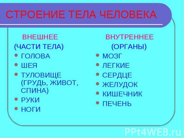 СТРОЕНИЕ ТЕЛА ЧЕЛОВЕКА ВНЕШНЕЕ(ЧАСТИ ТЕЛА)ГОЛОВАШЕЯТУЛОВИЩЕ (ГРУДЬ, ЖИВОТ, СПИНА)РУКИНОГИ ВНУТРЕННЕЕ (ОРГАНЫ)МОЗГЛЕГКИЕСЕРДЦЕЖЕЛУДОККИШЕЧНИКПЕЧЕНЬ