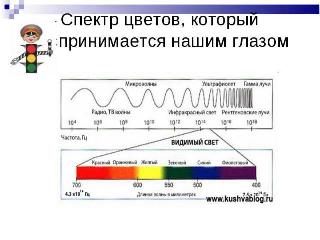 Спектр цветов, который воспринимается нашим глазом